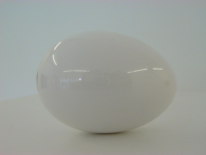 Statue of Polished Egg